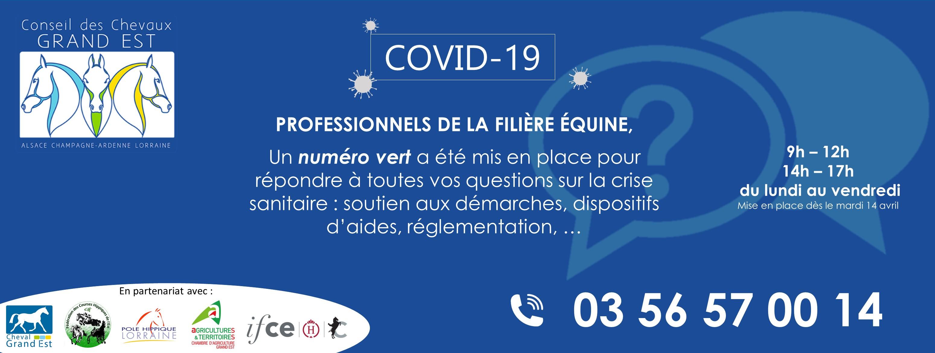 Covid-19 : le Conseil des Chevaux du Grand Est met en place un numéro vert : 03 56 57 00 14