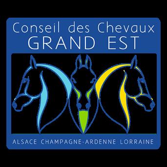 Communiqué de presse : Le Conseil des Chevaux du Grand Est vient en soutien à la filière équine du Grand Est