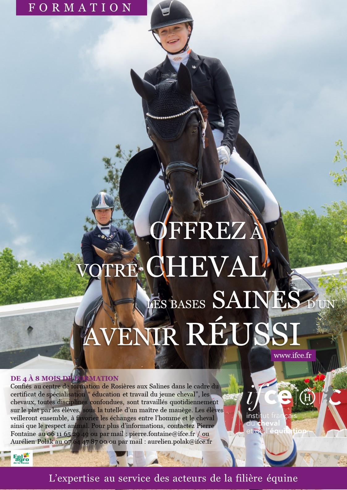 Confiez vos chevaux au centre de formation IFCE du haras de Rosières-aux-Salines !
