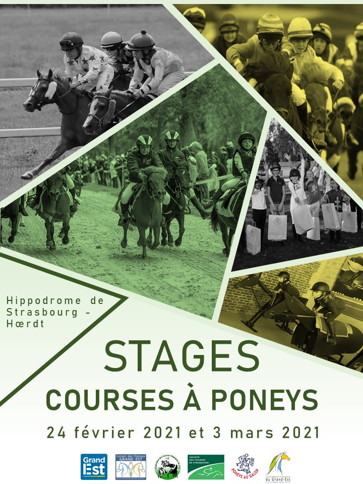 """Stages de course à poneys prévus à l""""hippodrome de Strasbourg-Hoerdt"""
