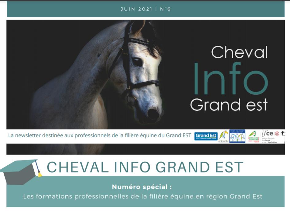 Newsletter Cheval Info Grand Est : Focus sur les formations professionnelles de la filière équine en Grand Est