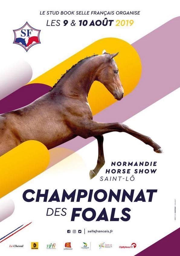Championnat des Foals - Saint Lô