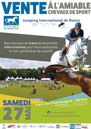 Vente à l'amiable de chevaux de 3 ans au Jumping CSI3* de Reims